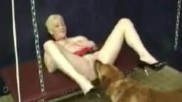Sex dogs домашние зоофилы устроили порнозоо перепихон с четвероногим
